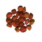 AMSF-GLASS-10-orange-550