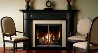 Mendota gas fireplaces